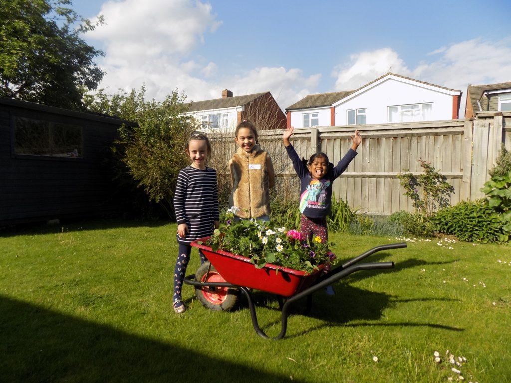 Messy barrow - garden of eden in a wheelbarrow